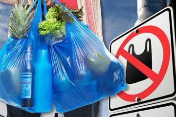 Aujourd'hui marque la Journée mondiale sans sacs plastique