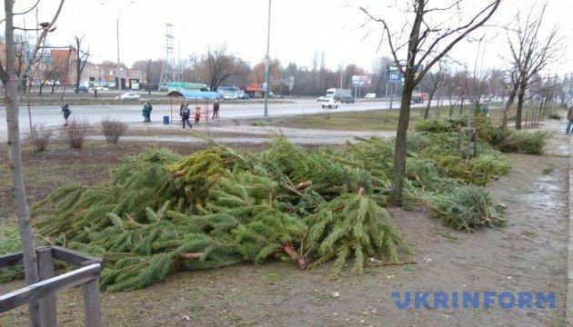 На ліквідацію непроданих і кинутих ялинок у Києві витратять 300 тис грн