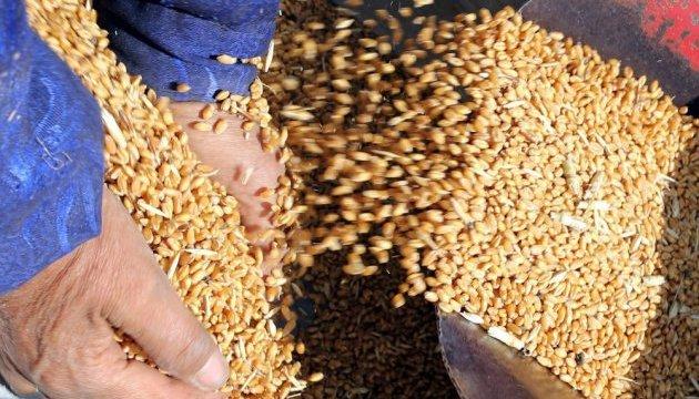 Україна продає світові харчі, а варто додати - технології