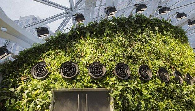 Тропики в центре города: как выглядит новый офис Амазон в Сиэтле