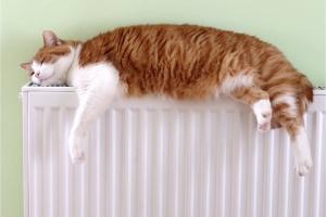 АМКУ рекомендував тепловикам знизити в платіжках суми за опалення та гарячу воду