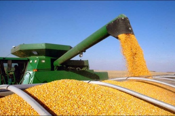 Ukraine gains the right to export grain seeds to EU