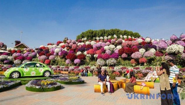 Цветочный самолет и гигантские лебеди: путешествие в дубайский Сад чудес