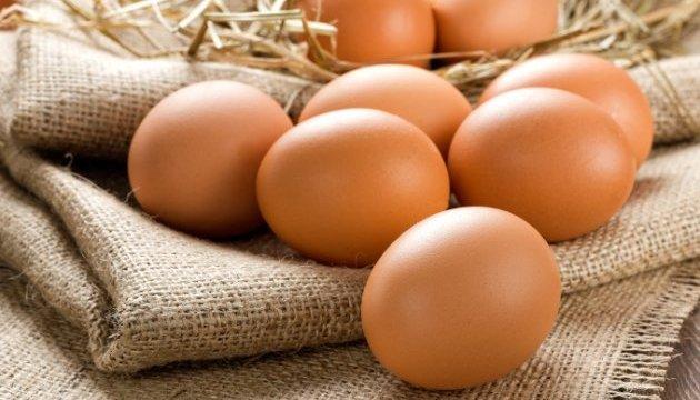 Polonia se ve preocupada por la competencia de los productores de huevos ucranianos en la UE