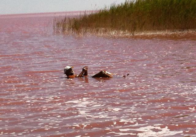 Укрінформ закликав українців побувати на Лемурійському озері, що на Херсонщині