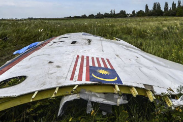 New suspects may appear in MH17 case – Ukraine's ambassador