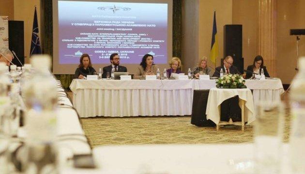 Se celebra la reunión del Consejo Interparlamentario Ucrania-OTAN