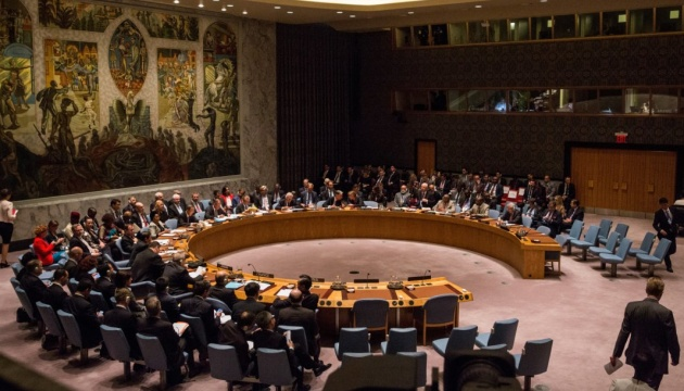 Sweden at UN: Illegal elections in occupied Donbas violate Minsk agreements