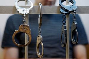 На Житомирщине задержали воров-иностранцев