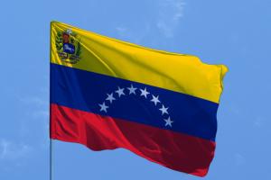 ЕС выступает против проведения досрочных выборов в Венесуэле
