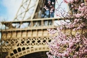 «Французька весна»: стартував фестиваль допрем'єрних показів кіноновинок