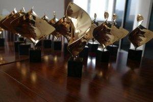 "Золота Дзиґа: голосование в номинации ""Премия зрительских симпатий"""