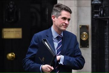 ウィリアムソン英国防相、MH17に関するロシアの発表にコメント