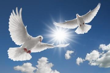 Hoy es el Día Internacional de la Paz