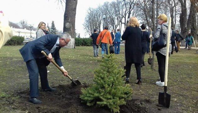 Депутати посадили ялинки у Маріїнському парку