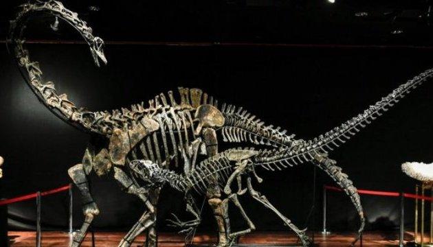 Скелети двох динозаврів пустили з молотка, вторгували майже €3 мільйони
