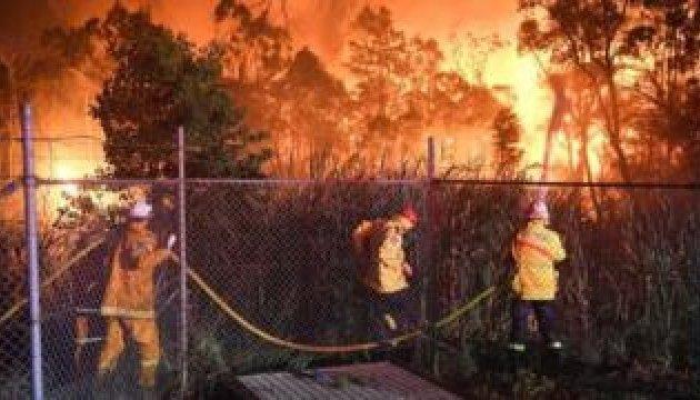 Лісова пожежа досягла передмість Сіднея