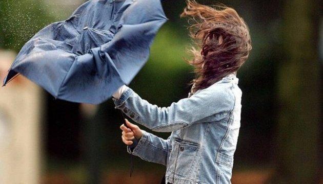 Киян попереджають про сильний вітер до кінця дня