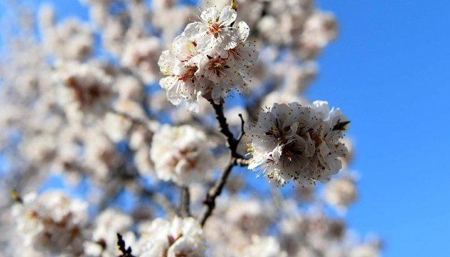 21 апреля: народный календарь и астровестник
