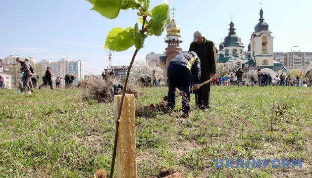 Цьогоріч у столиці планують висадити понад 100 тисяч дерев