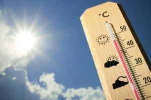 Від аномальної спеки в Індії загинули вже 70 осіб
