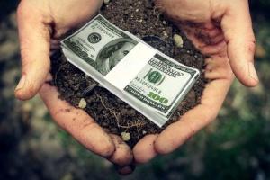 Киевсовет просит правительство не допустить продажи сельхозземель