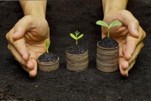 Освоєння капітальних інвестицій в агросектор торік зросло на 14%