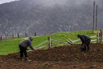 Le prix d'un hectare de terre en Ukraine pourrait atteindre 10 000 dollars