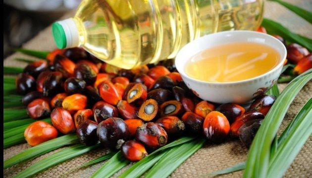 Le Parlement pourrait interdire l'utilisation de l'huile de palme en Ukraine