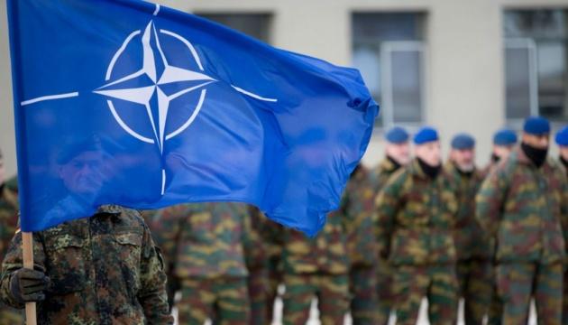 НАТО не примет Катар в свой состав