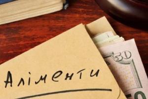 На Луганщині новий закон дозволив стягнути з аліментників торік понад 60 мільйонів