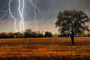 Вместе с 36-градусной жарой Украине прогнозируют град и шквалы