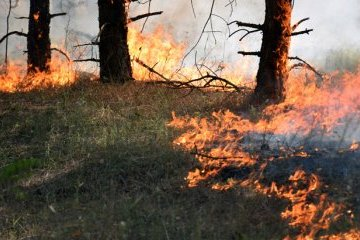 Extreme fire hazard remains in Ukraine until June 18