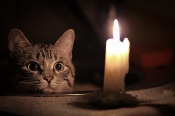Le mauvais temps a laissé 129 villes et villages ukrainiens sans électricité