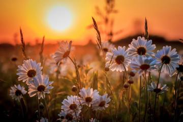 По всій Україні завтра - спекотно і майже без дощів