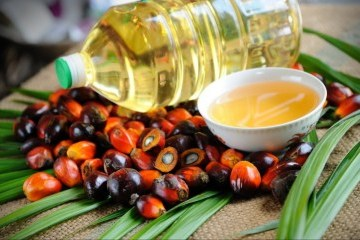 Ukraine imports almost 111,000 tonnes of palm oil in H1 2019