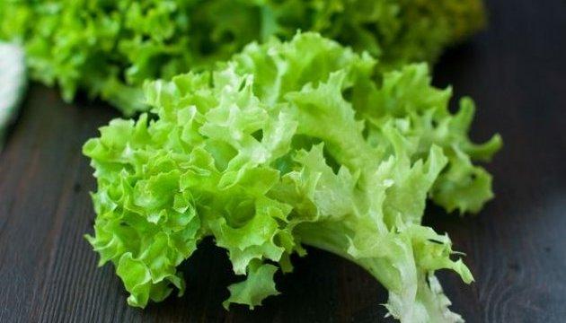 На Тернопільщині виявили заражений салат із Польщі