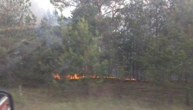 Поліція відкрила справу за фактом пожежі у Чорнобильській зоні