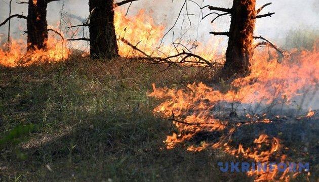 Пожежна небезпека залишається найвищою в чотирьох областях