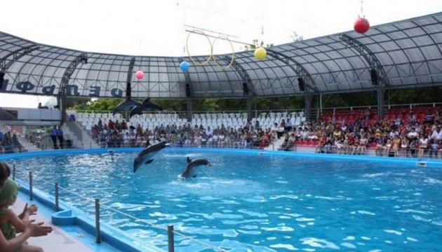 В Одессе родился дельфиненок на глазах зрителей шоу