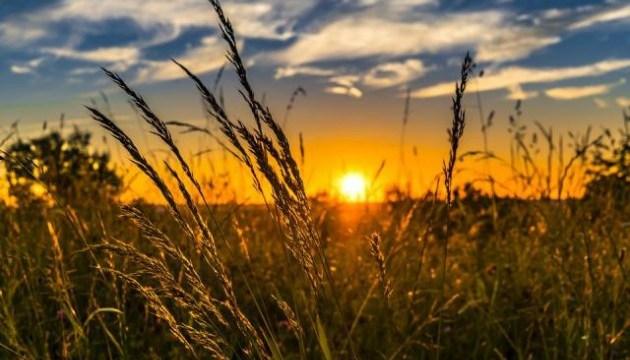 Синоптики на сегодня обещают ливни и жару