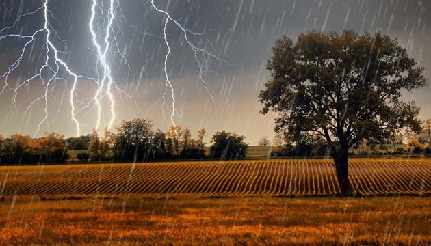 Hoy se esperan tormentas y ráfagas de viento en Ucrania