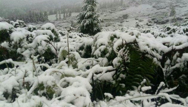 Snow fell in Carpathian mountains