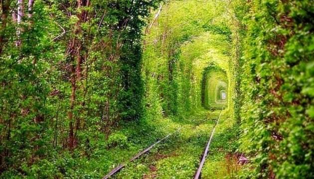 Тунель кохання закрили для туристів