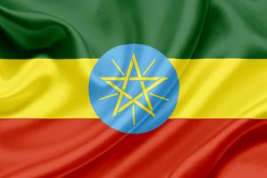 На святкуванні Водохреща в Ефіопії загинули 10 осіб, понад 100 постраждалих
