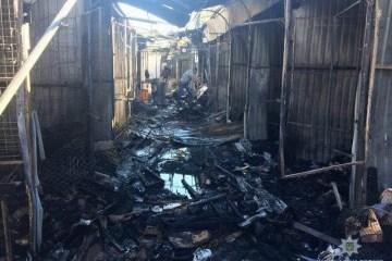 Se han producido 358 incendios en Ucrania, hay víctimas
