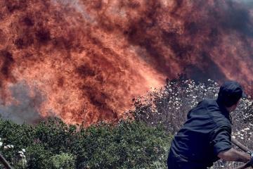 Premier: Regierung ist bereit, Griechenland bei Bekämpfung von Großbränden zu helfen