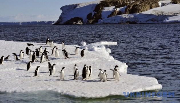 Україна відправляє наукову експедицію до Південного океану