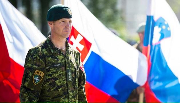 Россия распространяет меньше фейков о НАТО в Балтии - командующий канадских сил