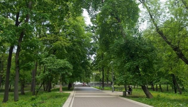 Власти Киева запретили вырубывать парки и Конча-Заспу